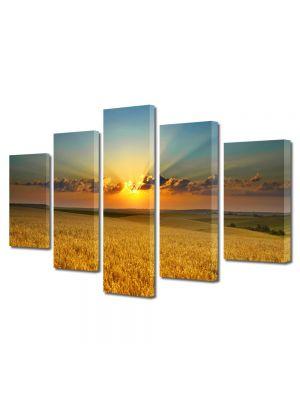 Set Tablouri Canvas 5 Piese Peisaj Apus peste lanul de grau