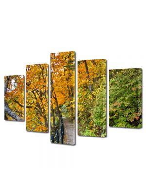 Set Tablouri Multicanvas 5 Piese Peisaj Poteca lunga