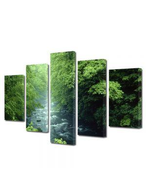 Set Tablouri Canvas 5 Piese Peisaj Rau la munte