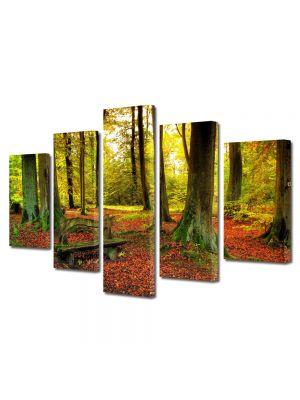 Set Tablouri Multicanvas 5 Piese Peisaj Covor rosiatic