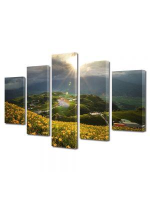 Set Tablouri Multicanvas 5 Piese Peisaj Floricele pe campii