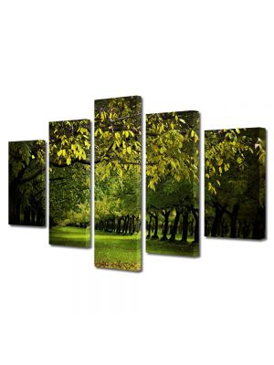 Set Tablouri Multicanvas 5 Piese Peisaj Copaci verzi