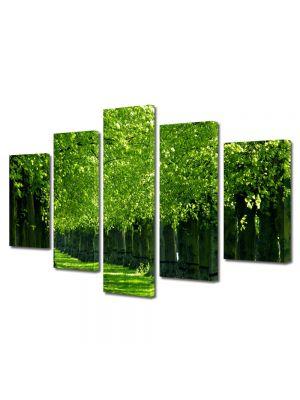 Set Tablouri Multicanvas 5 Piese Peisaj Verde intens