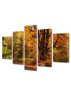 Set Tablouri Multicanvas 5 Piese Peisaj Amestec de culori de toamna