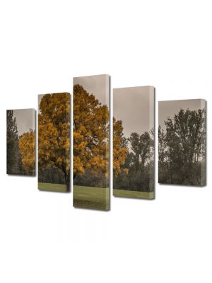 Set Tablouri Multicanvas 5 Piese Peisaj Copac la amurg