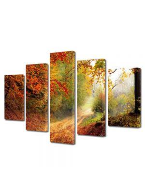 Set Tablouri Multicanvas 5 Piese Peisaj Poteca prin padure