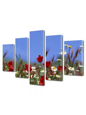 Set Tablouri Multicanvas 5 Piese Peisaj Flori pe camp