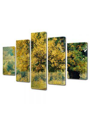 Set Tablouri Multicanvas 5 Piese Peisaj Copac batran