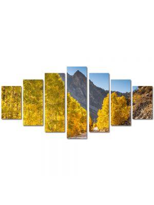 Set Tablouri Multicanvas 7 Piese Peisaj Drum superb