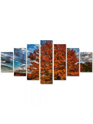 Set Tablouri Multicanvas 7 Piese Peisaj Nori in viteza