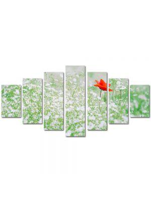 Set Tablouri Multicanvas 7 Piese Peisaj Floare rosie