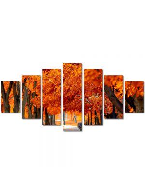 Set Tablouri Multicanvas 7 Piese Peisaj Parc boem