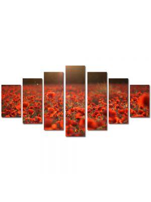 Set Tablouri Multicanvas 7 Piese Peisaj Camp de maci