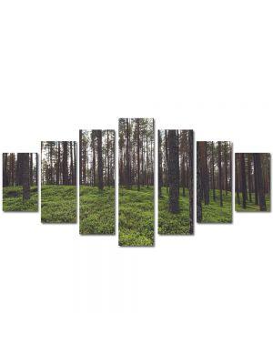 Set Tablouri Multicanvas 7 Piese Peisaj Padure rara