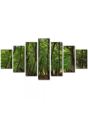 Set Tablouri Multicanvas 7 Piese Peisaj Trunchiuri