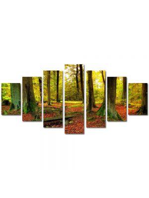 Set Tablouri Multicanvas 7 Piese Peisaj Covor rosiatic