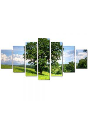 Set Tablouri Multicanvas 7 Piese Peisaj Copac masiv
