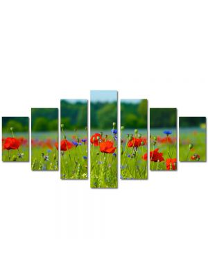 Set Tablouri Multicanvas 7 Piese Peisaj Floricele pe campie