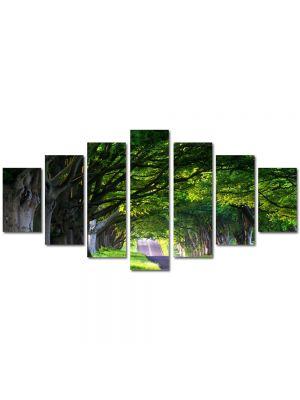 Set Tablouri Multicanvas 7 Piese Peisaj Umbre de copaci batrani