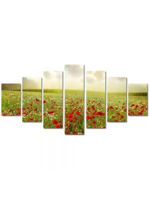 Set Tablouri Multicanvas 7 Piese Peisaj Maci superbi
