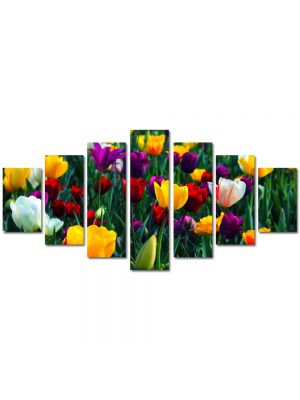 Set Tablouri Multicanvas 7 Piese Peisaj Lalele Colorate