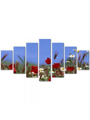 Set Tablouri Multicanvas 7 Piese Peisaj Flori pe camp