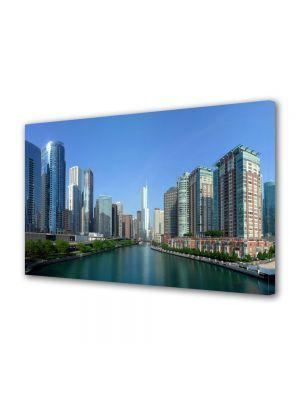 Tablou VarioView MoonLight Fosforescent Luminos in Urban Orase Raul din Chicago