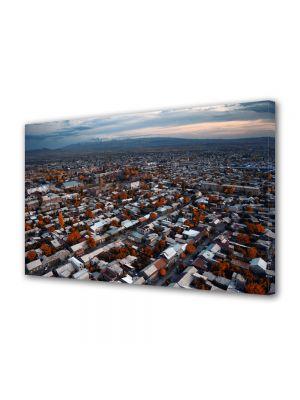 Tablou VarioView MoonLight Fosforescent Luminos in Urban Orase Oras in Armenia