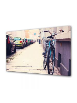 Tablou VarioView MoonLight Fosforescent Luminos in Urban Orase Cu bicicleta in oras