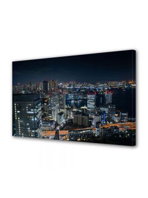 Tablou VarioView MoonLight Fosforescent Luminos in Urban Orase Port in Tokyo
