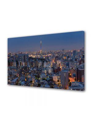 Tablou VarioView MoonLight Fosforescent Luminos in Urban Orase Apus in Tokyo