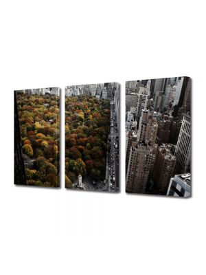 Set Tablouri Multicanvas 3 Piese Toamna in New york