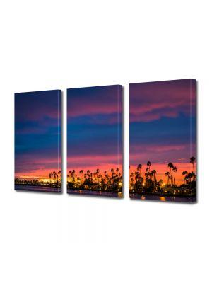Set Tablouri Multicanvas 3 Piese San Diego