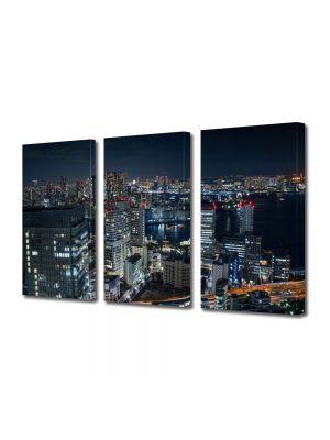 Set Tablouri Multicanvas 3 Piese Port in Tokyo