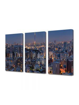 Set Tablouri Multicanvas 3 Piese Apus in Tokyo