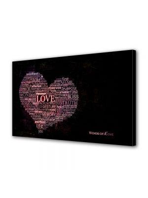 Tablou Canvas Valentine's Day Ziua indragostitilor In lumina reflectorului inima