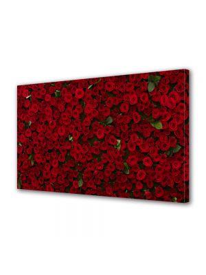 Tablou Canvas Valentine's Day Ziua indragostitilor Multi trandafiri