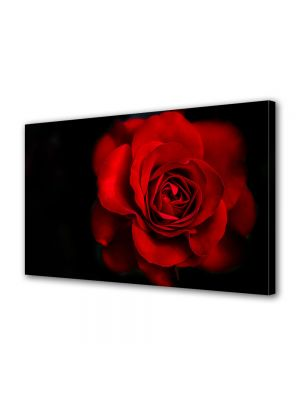 Tablou Canvas Valentine's Day Ziua indragostitilor Trandafir superb