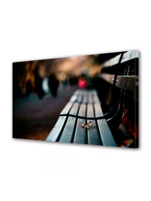 Tablou Canvas Valentine's Day Ziua indragostitilor Impreuna in parc