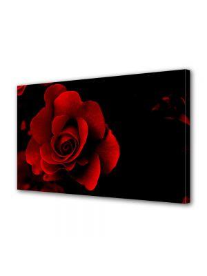 Tablou Canvas Valentine's Day Ziua indragostitilor Petale rosii de trandafir