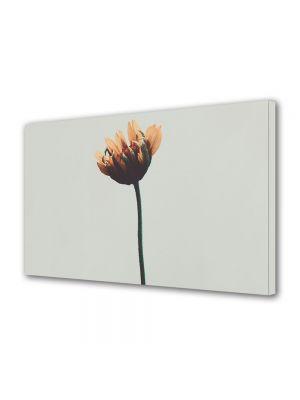 Tablou Canvas Vintage Aspect Retro Floare de gradina