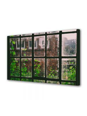 Tablou Canvas Vintage Aspect Retro Plante la fereastra