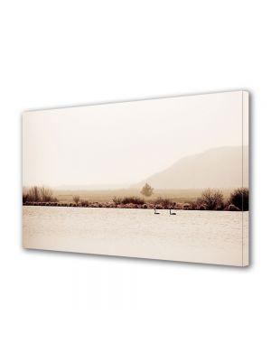 Tablou Canvas Luminos in intuneric VarioView LED Vintage Aspect Retro Lebede pe lac
