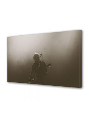 Tablou Canvas Vintage Aspect Retro In concert