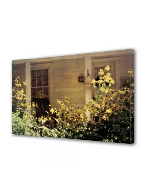 Tablou Canvas Vintage Aspect Retro Flori de gradina