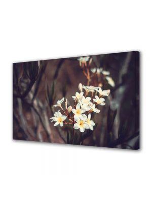 Tablou Canvas Luminos in intuneric VarioView LED Vintage Aspect Retro Flori albe tropicale