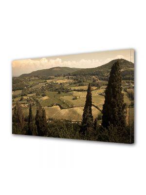 Tablou Canvas Vintage Aspect Retro Dealurile Toscanei