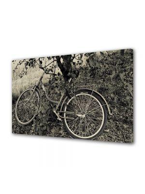 Tablou Canvas Vintage Aspect Retro Bicicleta sub copac