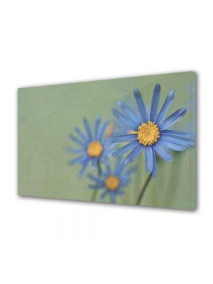Tablou Canvas Luminos in intuneric VarioView LED Vintage Aspect Retro Margarete albastre