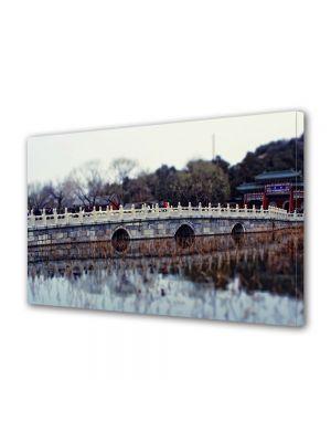 Tablou Canvas Luminos in intuneric VarioView LED Vintage Aspect Retro Pod de piatra chinezesc